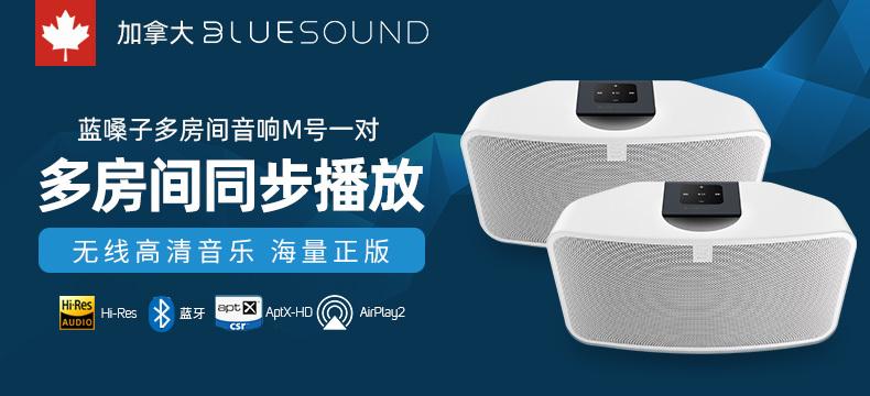 BLUESOUND  PULSE MiNi 2i(蓝嗓子 M号)  智能无线桌面对箱