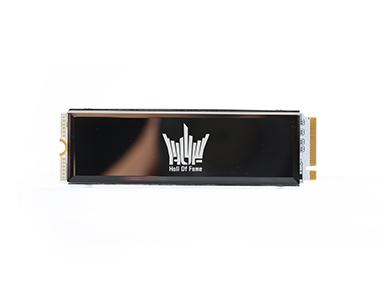 影驰HOF EXTREME PCIe4.0 SSD 1TB