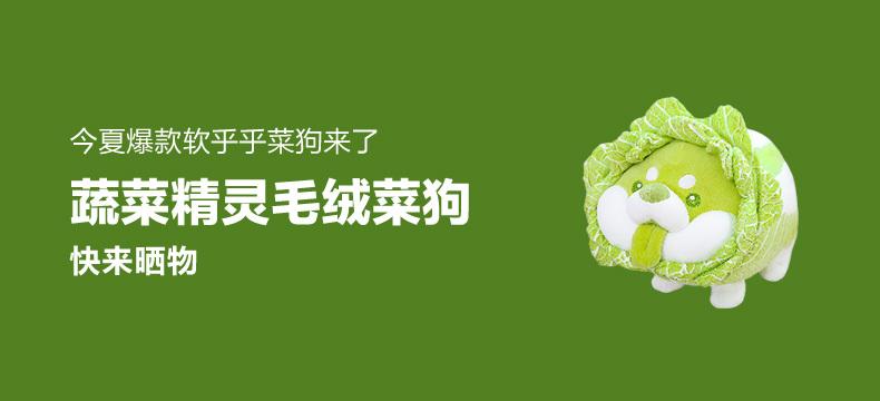 【众测晒物・七夕】棒潮玩 蔬菜精灵菜狗娃娃抱枕白菜狗公仔毛绒玩具 蹲姿菜狗35CM